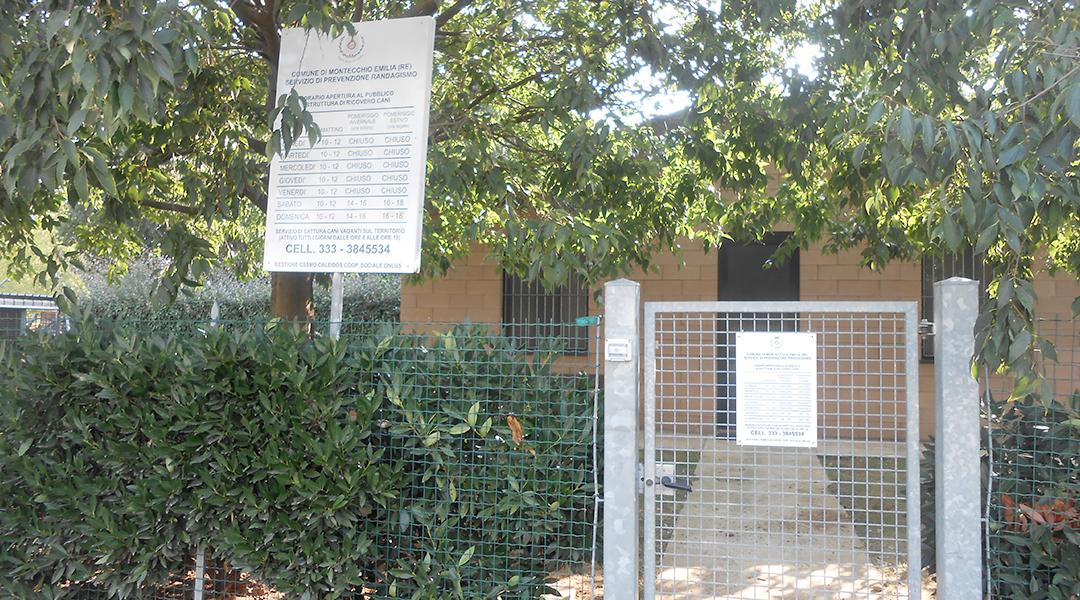 canile-montecchio-ingresso