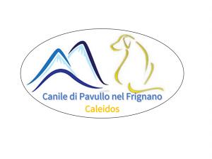 Logo_Pavullo